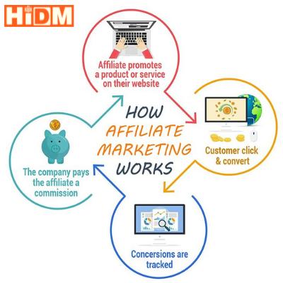 best digital marketing academy in hisar